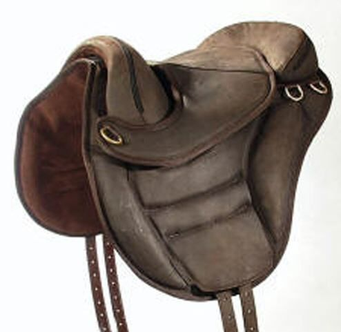 Torsion Treeless Saddle. The most comfortable saddle ever for horse and rider!