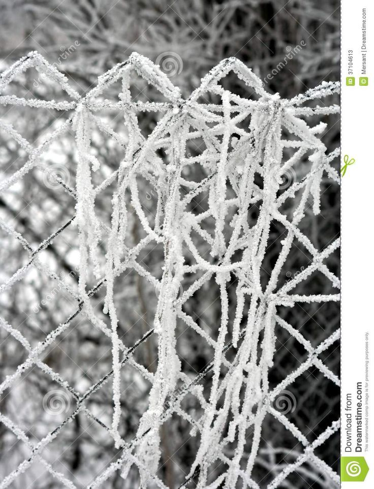 Ice and snow on a fence