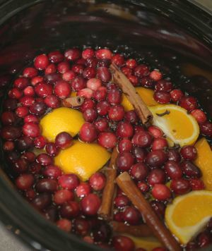 Christmas Potpourri in the slow cooker: Cranberry Orange Cinnamon Vanilla Scent