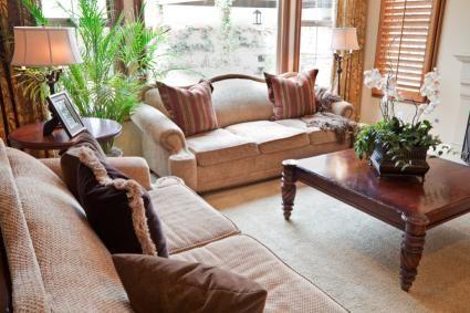 Indoor Plants For Shade Gardenia Indoor Shade Plants 640 x 480