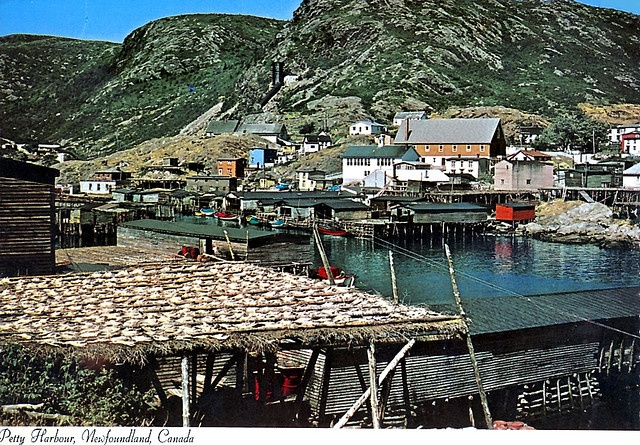 Those are cod fish on the dock - drying out in the sun.....the days of yore.....