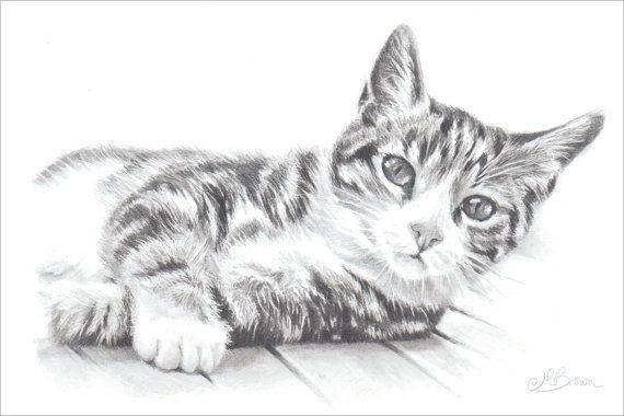 Gato, impresión del arte del gato, dibujo de un gato a lápiz. Regalo para el amante de gato.