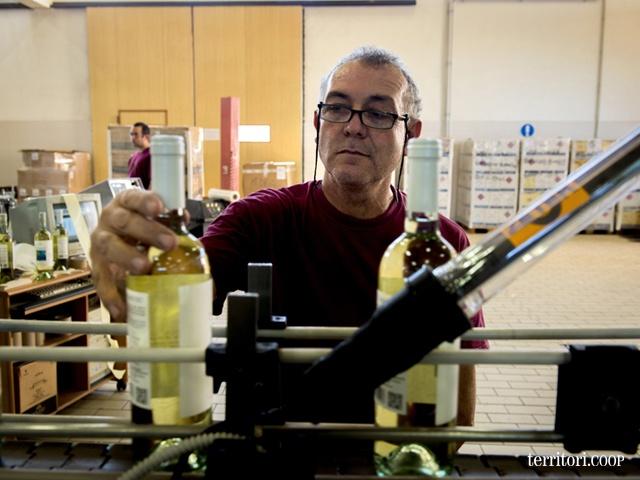 Tutti attenti alla qualità del #vino #Sicilia #produzione #wine #Fazio