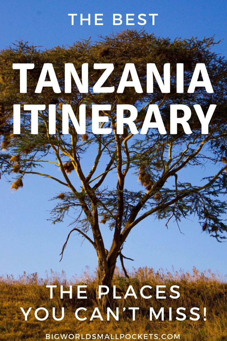 If you're looking for adventure activities, beautiful beaches, curious cultures and some world-class safari opportunities, then look no further than my best Tanzania Itinerary and the places you can't miss in this incredible country… {Big World Small Pockets}