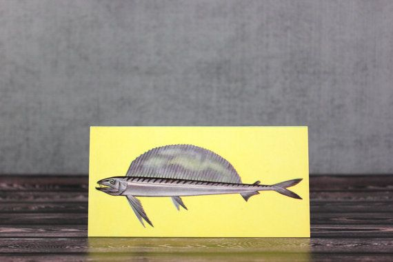 Vintage longnose lancetfish flash card by OldVintageGoodies, $4.00.