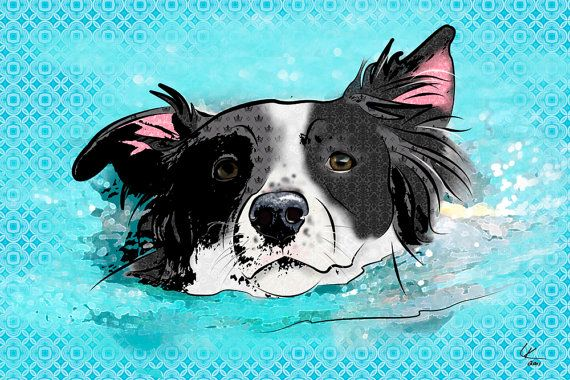 Border Collie Pop Art Print Sheltie Original Art by PopDogDesigns, $20.00