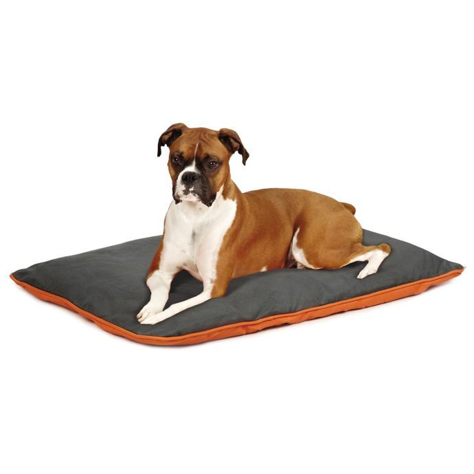 Insect Shield Reversible Pet Bed Bed Bath Beyond With Images