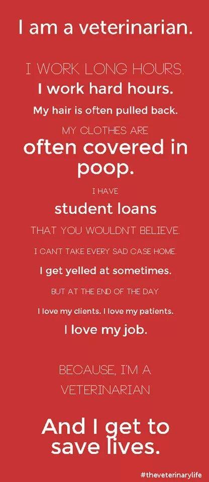 I am a veterinarian                                                                                                                                                                                 More
