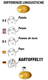 German is so scary sometimes! Haha