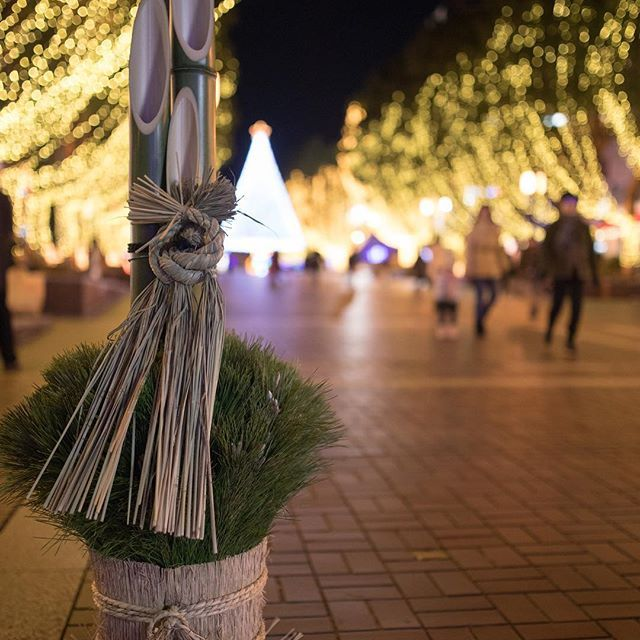 Instagram【fmyoois】さんの写真をピンしています。 《遅ればせながらあけましておめでとうございます。 本年もぽつりぽつりとポストしていきますのでお付き合い下さい。 門松×クリスマスツリー 悪くない 撮影地 多摩センター location Tamacenter #japan_night_view #team_jp_東 #team_jp_ #canon_photos #jpn_finder #travee #東京#多摩センター#イルミネーション#夜景#門松#クリスマスツリー#パルテノン大通り #tokyo#tamacenter#illumination#nightview #christmastree #parthenonmainstreet》
