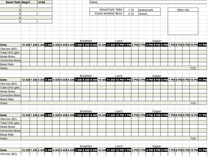 Diabetes Insulin Pump Log Template Sample DIabetes Pinterest - blood glucose chart template