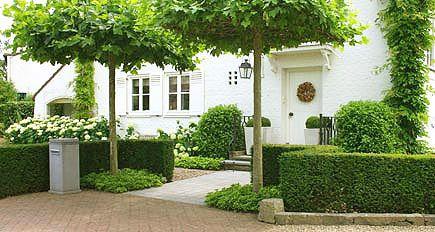 http://www.tuindesign-ten-horn.nl Tuinarchitect - tuinontwerp. Klassieke voortuin met hagen en dakbomen bij villa in Belgisch Limburg.