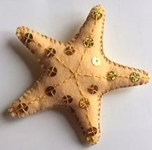 Big starfish, back view