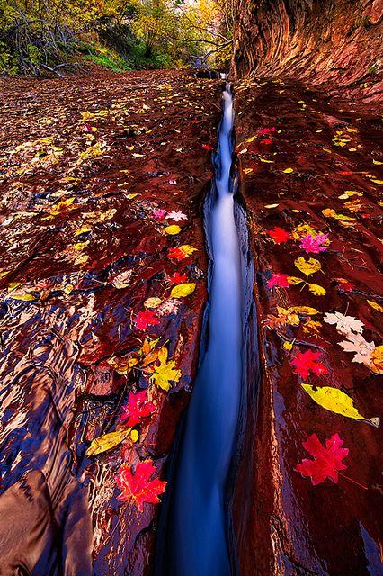 """Infinite Journey,"" Zion National Park, Utah. Photo: Joseph Rossbach via Flickr."