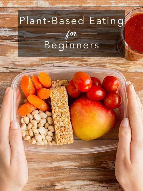 Plant Based Diet Recipes For Beginners To Go Vegan Safe