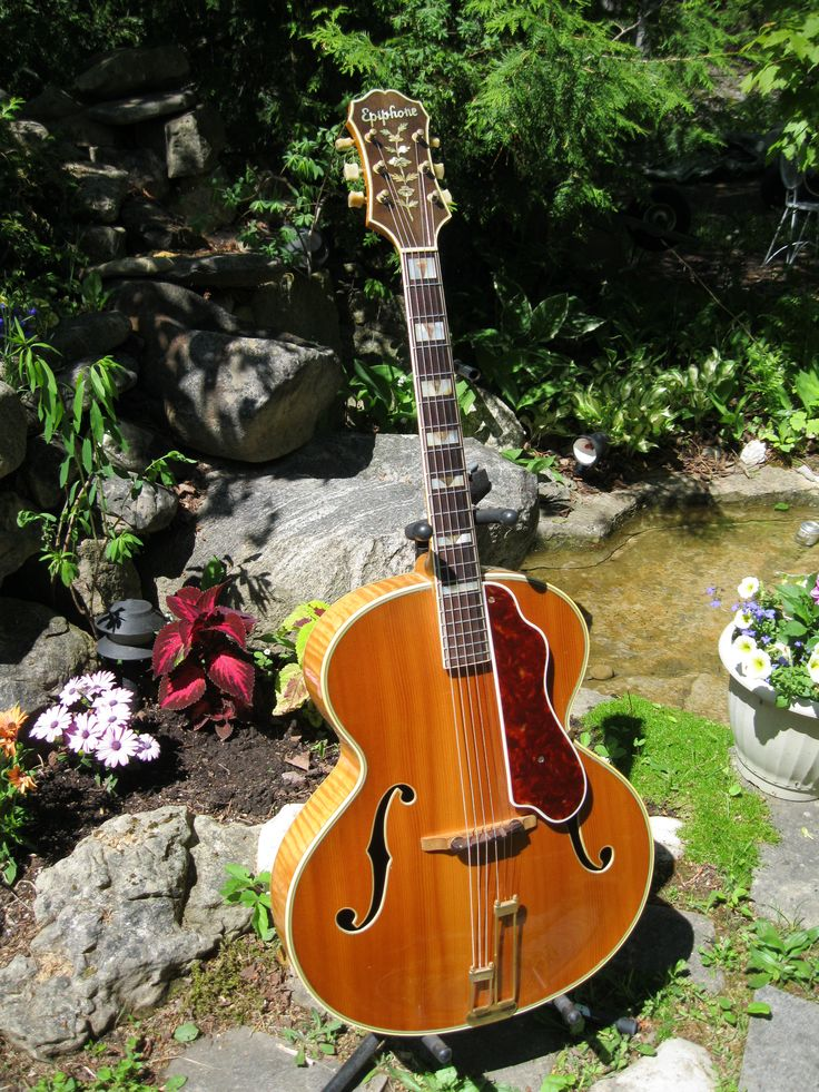 a81f8ddb796bb7ff0edb0cd626a58056 archtop guitar jazz guitar 69 best archtop guitars images on pinterest archtop guitar epiphone zephyr blues deluxe wiring diagram at crackthecode.co