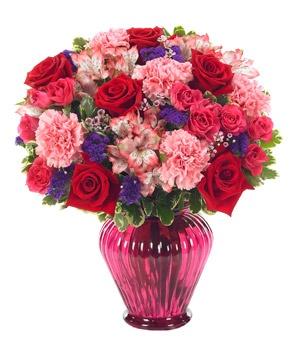 valentine one customer service