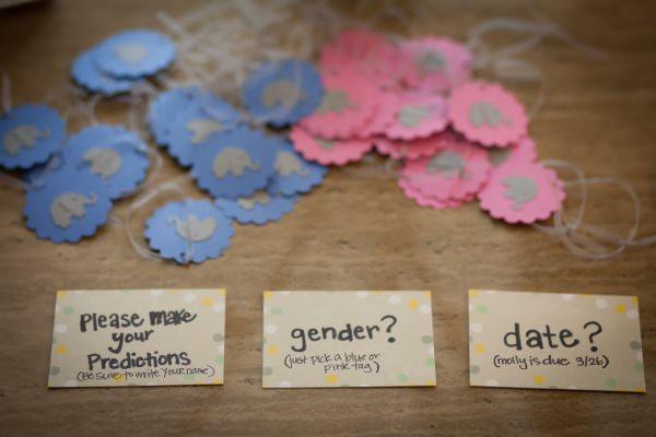 gender neutral baby shower games: write your guess of the gender on a tag and hang it on a tree