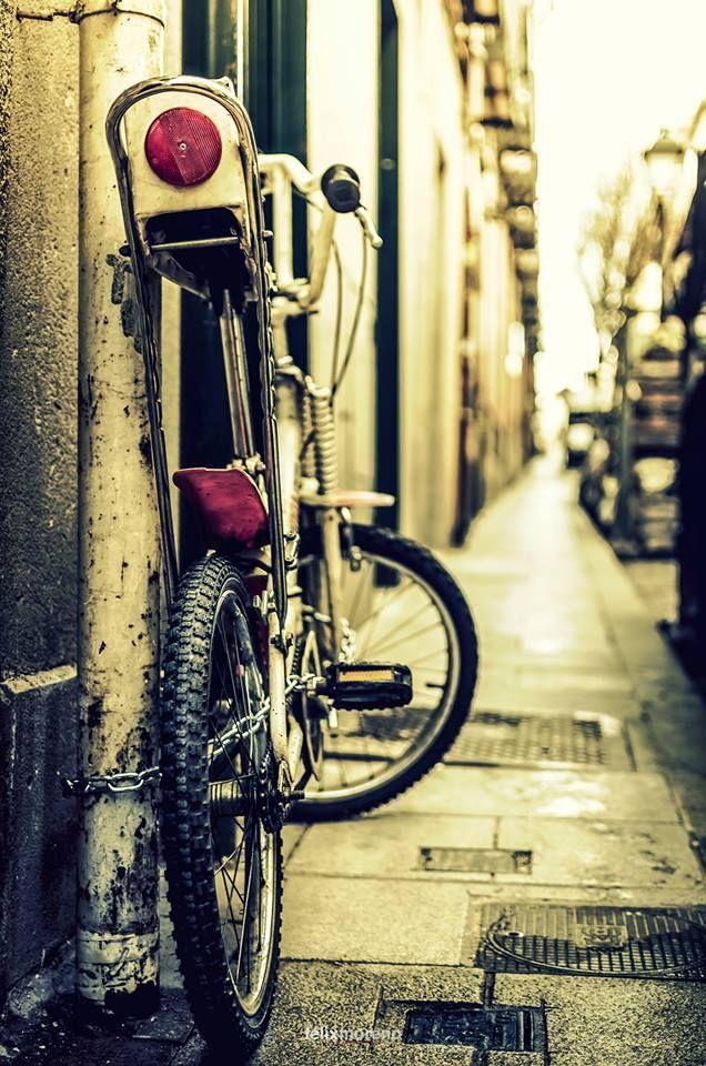 Compañera de aventuras Bicicross. by © Félix Moreno Palomero #99 of #365Photos