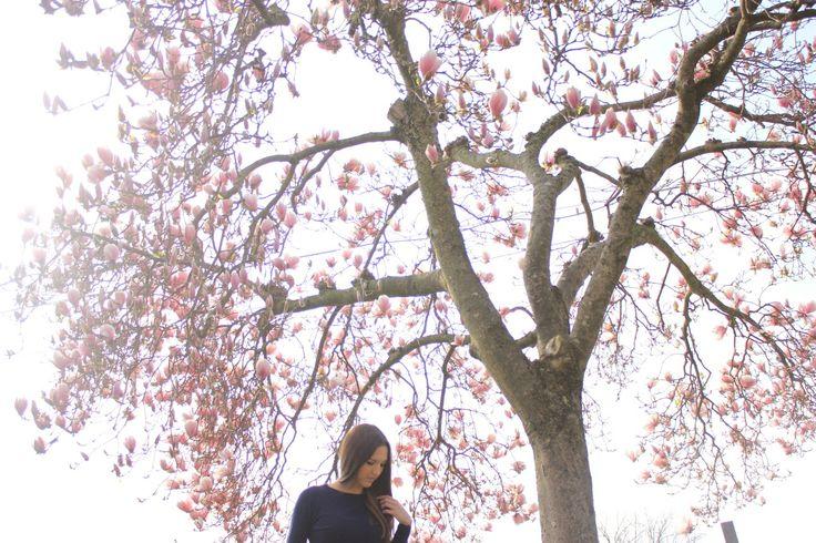 Spring  Lasartoriadeiconfetti.bigcartel.com