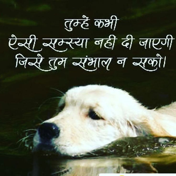 Thought of the day.. #hindi#hindithoughts #Motivational #Inspiration#Suvichar #ThoughtOfTheDay #MotivationalQuotes