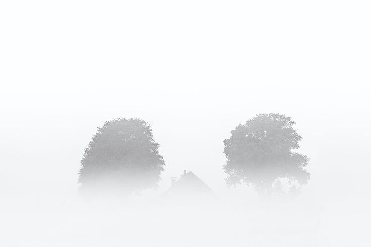 Ochtendmist op een bewolkte dag bij Oudemolen in Drenthe.