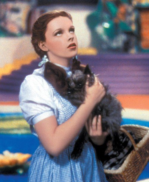 15 best images about dorothy gale on pinterest dorothy for Dorothy gale