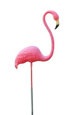 Pink Flamingo Party - Birthday Party Ideas for Kids