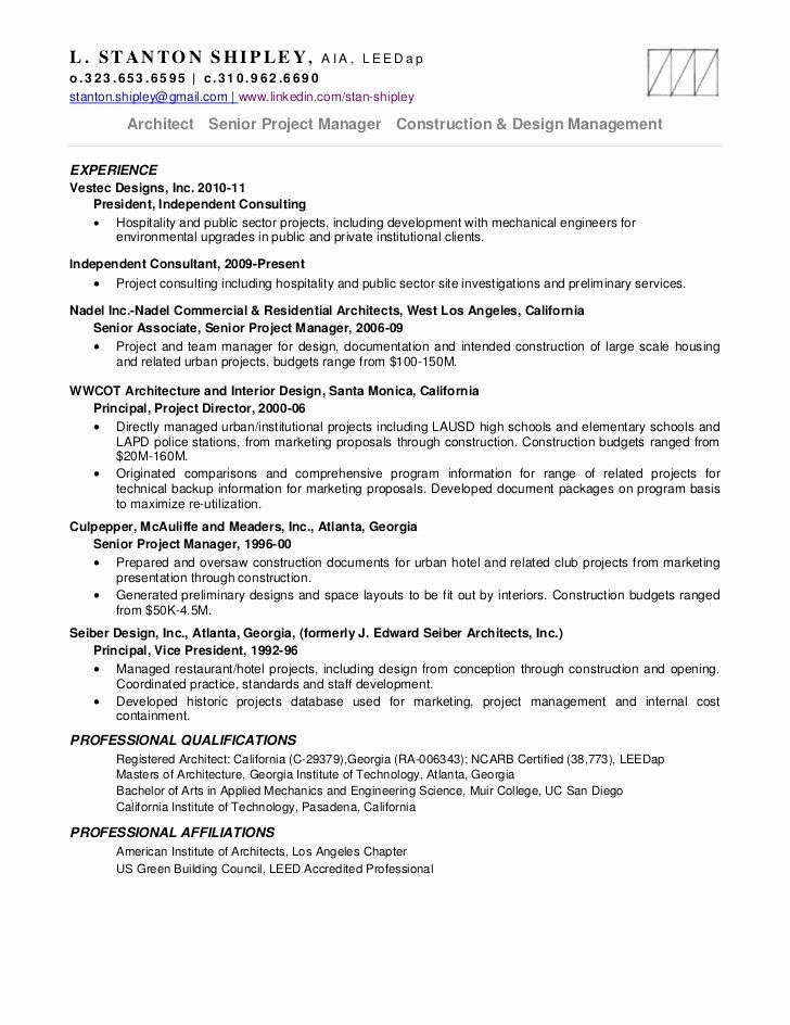 Independent Consultant Resume Example Lovely Write My Essay Independent Management Consultant Resum Project Manager Resume Resume Examples Good Resume Examples