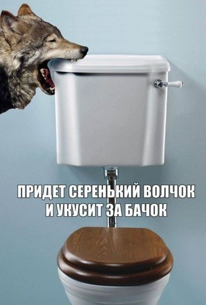 Немного юмора вам в ленту. :)  А здесь унитазы с бачком, за который точно не укусит волчок:https://goo.gl/j4sNce  #сантехника #унитаз #подвеснойунитаз #унитазкомпакт #волчок #бачок #бочок #юмор #ваннаякомната #ванная #санузел #туалет #ремонтванной #ремонтвванной
