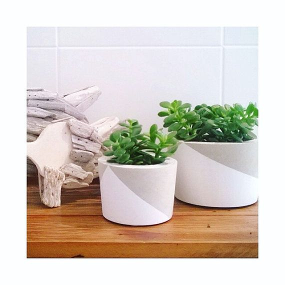 FEATURES & IMPORTANT INFO. This listing is for one LARGE concrete planter. 110mm (height) & 155 (diameter)*. The pictures show the comparison