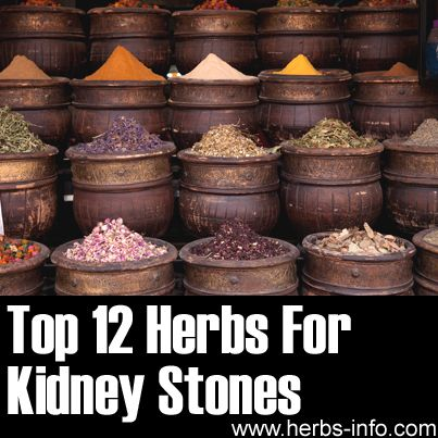 Top 12 Herbs For Kidney Stones. Mary... this reminded me of u... @Mary Powers tarchinski
