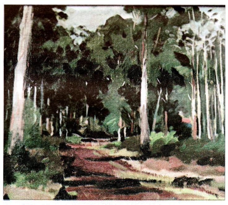 Meldrum, Max - Eucalyptus Forest