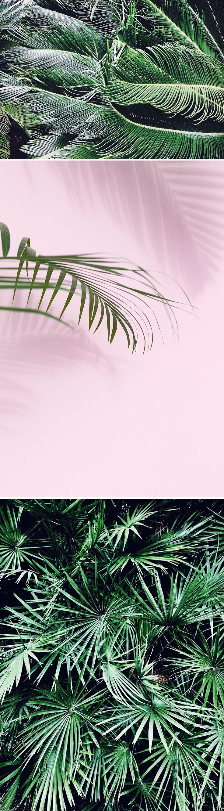 My_little_fabric_Pastel_Botanique