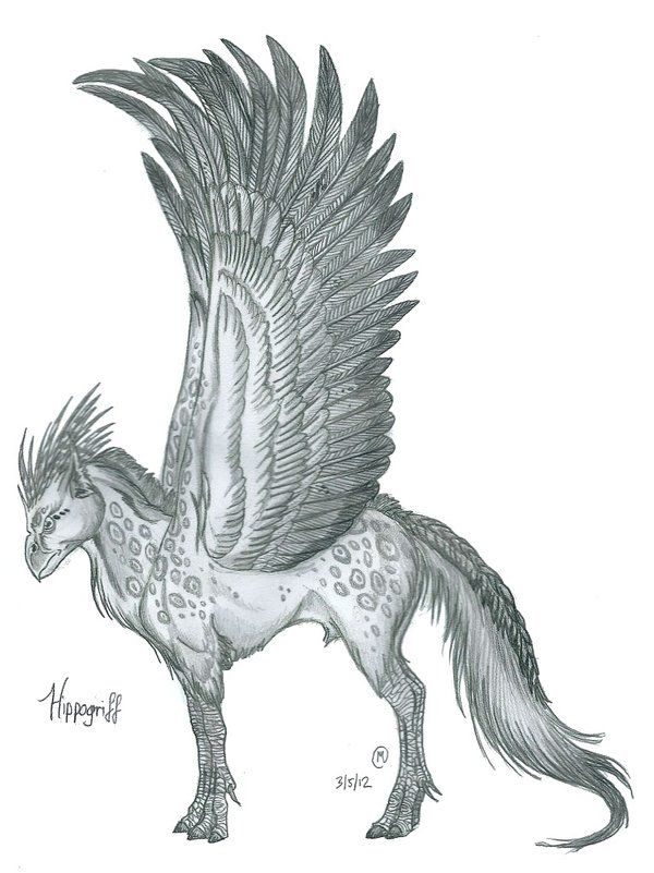 Hippogriff Vs Griffin Google Search Variety Fantasy