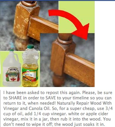 Repair wood with vinegar and canola oil https://www.facebook.com/isavea2z/photos/a.211371005566896.45436.189002201137110/613321765371816/?type=1