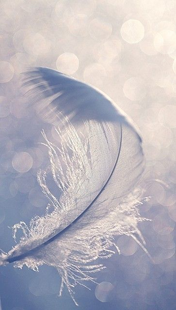 There is always a thought of a visit from an angel who loves you....when you discover a feather! I paint a feather on all my paintings to represent His provision of angels to watch over us.