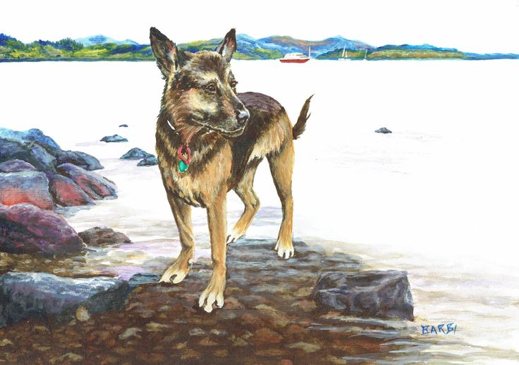 """""""Tessa"""" Acrylic on watercolour paper - Order your custom pet portrait at  http://www.furryfaces.co.nz"""