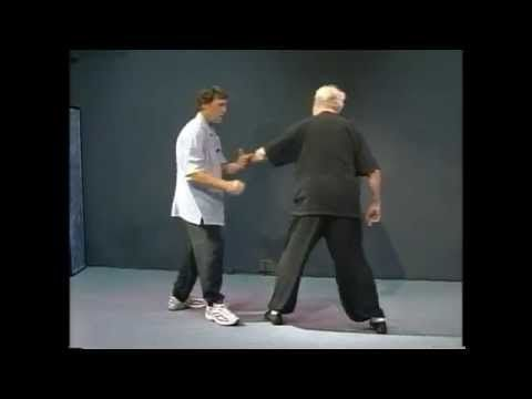 Complete Yang Style Tai Chi Long Form Applications - Step by Step - Part 2