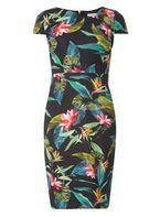 Womens Petite Black Tropical Print Scuba Dress- Black
