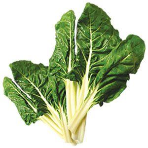 Información sobre una serie de alimentos que genera la agricultura. Beneficios para la salud y la prevención de enfermedades de la acelga, los arándanos, la calabaza, la col y remolacha. Aportan betacarotenos, ácido fólico, vitaminas, tienen propiedades antibacterianas, antioxidantes, minerales, etc.