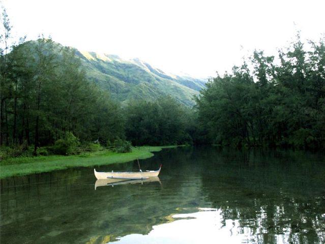 Eikones pou menoun: Τροπικά τοπία