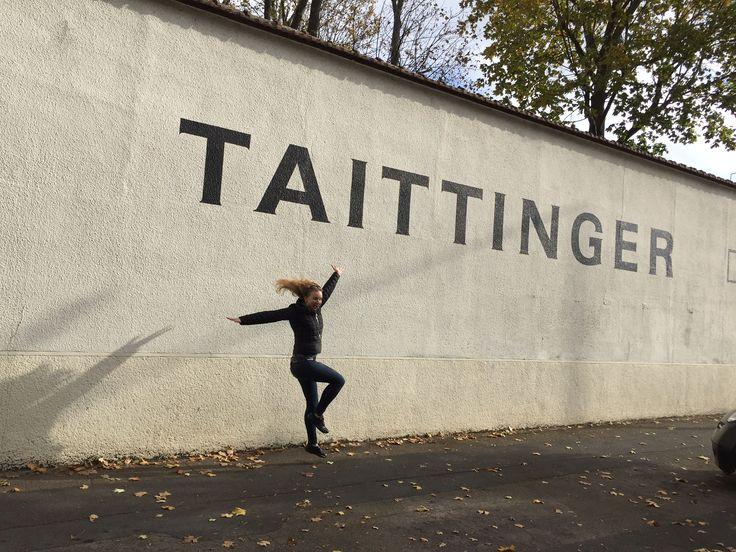 Taittinger champagne caves