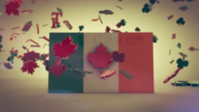 A video I made when I was granted Permanent Residency in Canada.