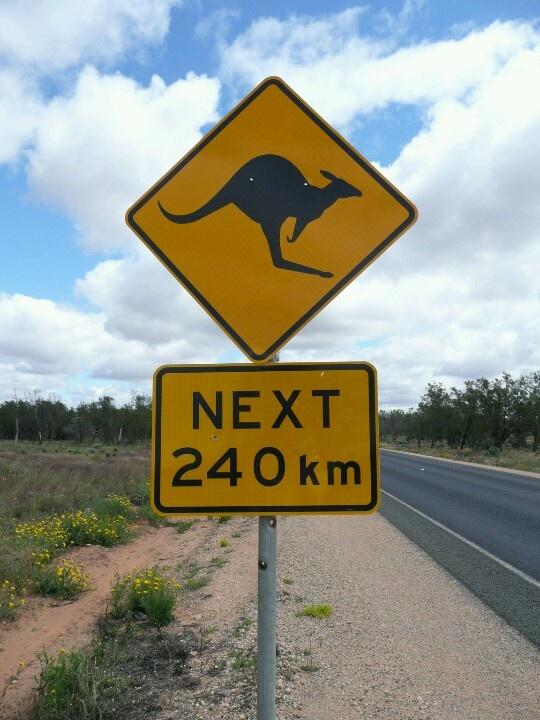Road to Broken Hill 2010