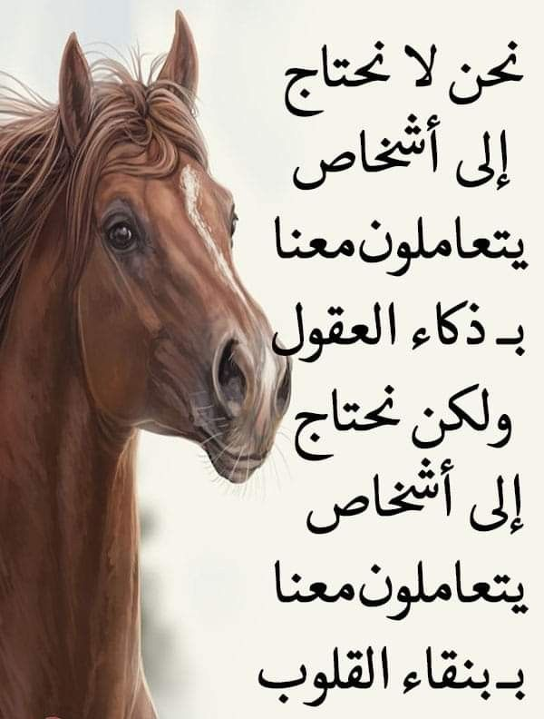 Pin By Khadkhad Math On Arabic Quotes Islamic Quotes Words Quotes Arabic Quotes