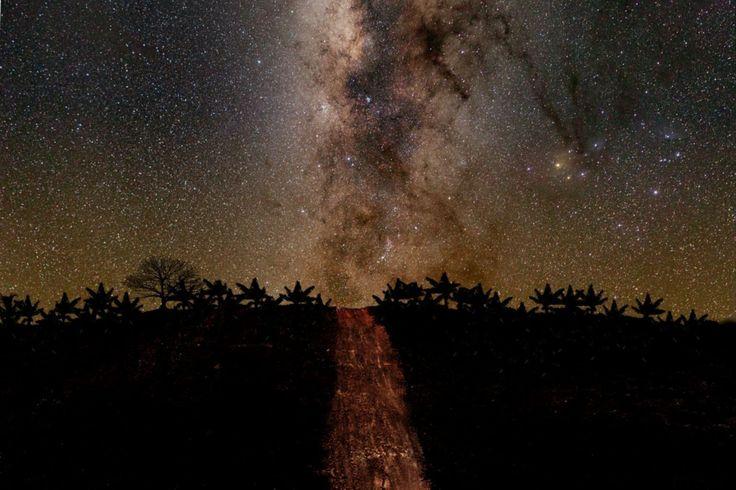 Vía estelar