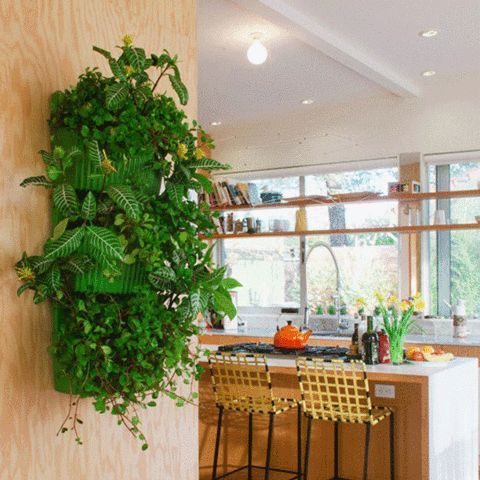 Living Wall Planter Green- System by Woolly Pockets | Urbilis Love these vertical gardens