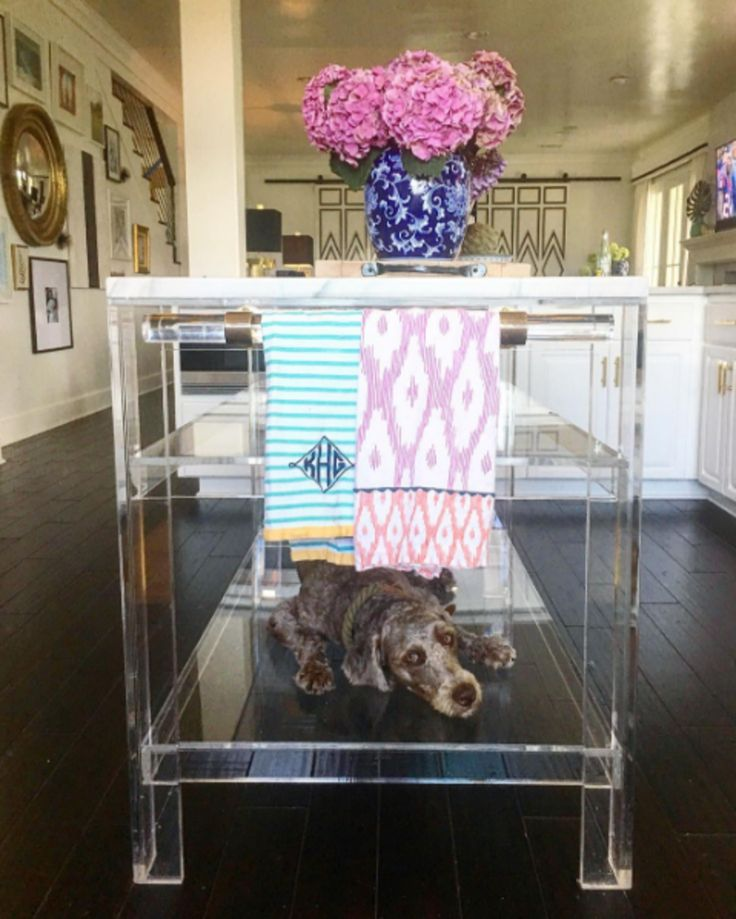 Our custom lucite islands double as the perfect hideaway for the pup!