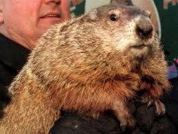 Groundhog Love - activities and songs